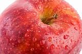 Macro apple with red drops of water - Shallow DOF