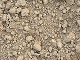 clay dry soil