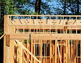 Joists and Trusses