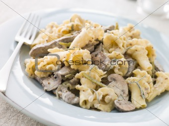 Campanelle Pasta with Beef Fillet Strips in a Sage and Grain Mus