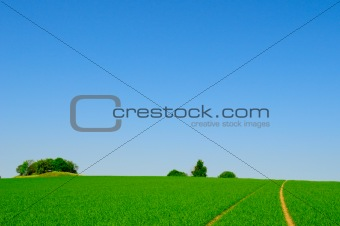 perfect farmland