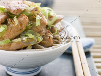 Bowl of Chicken and Leek Soba Noodles in Broth