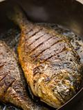 Emperor Bream Roasted with Tikka spices
