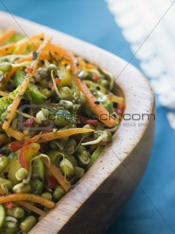 Bowl of Moong Bean Tikka Salad