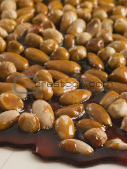 Pralines in Honey