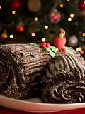 Chocolate Yule Log
