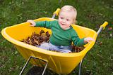 Toddler riding in wheelbarrow