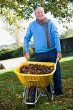 Senior man collecting autumn leaves