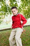 Young boy playing on tree swing