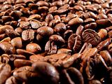 Coffee Beans Five