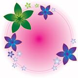 Flower Oval Frame
