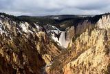 lower falls of yellowstone