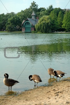 Central Park landmark