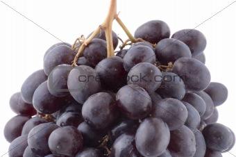 Black grapes macro