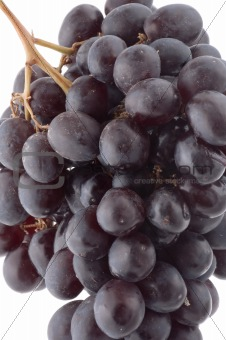 Black grapes on white