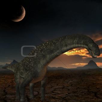 Titanosaurus colberti-3D Dinosaur