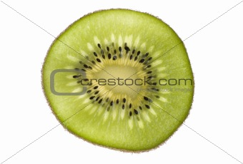 Kiwi Cross Section on White