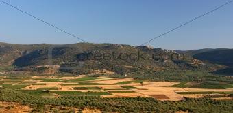 Agricultural Basin