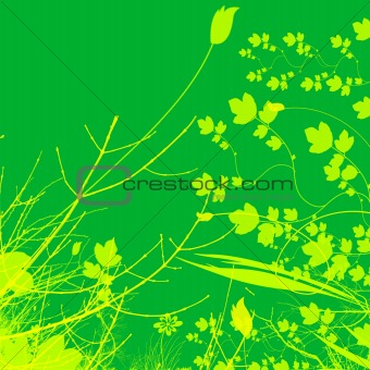 Green Plant and Flower Illustration Design