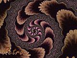 Brown Fractal Spiral 2d Pattern With Retro Text