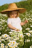 Little girl on the daisy field