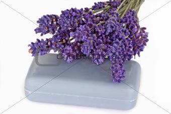 Blue Lavender Soap