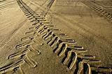Tracks in the sand at dusk.