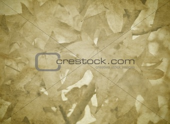 old paper with fall leaves