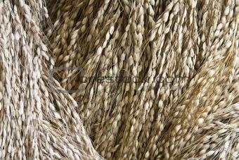 Rice decoration
