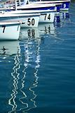 sailboats in marina before start of regatta