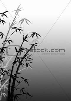 Branches of a bamboo