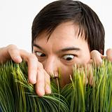 Man looking through grass.