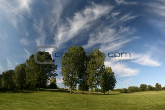 Beautiful landscape with grassland, trees and cirrus clouds in wide angle view