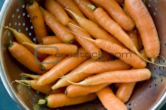 carrots in collander