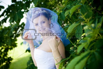 bride and a tree