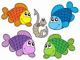 Cute carp collection