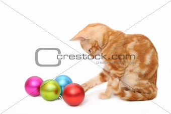 Kitten playing christmas balls