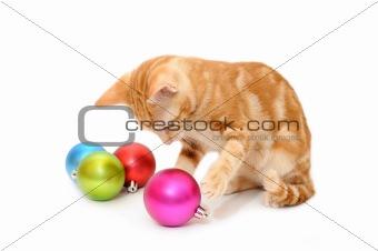 Kitten playing christmas balls