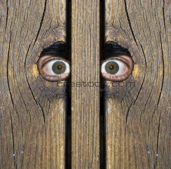 To eyes!