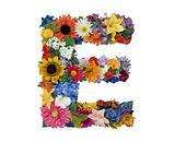Flower Alphabet - E