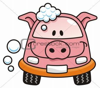 Car wash pig