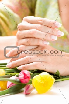 Beautiful hands with tulips