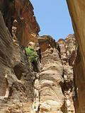 Deep canyon in Petra