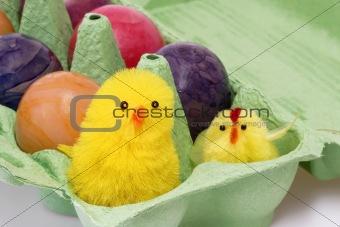 Cute toy chicken
