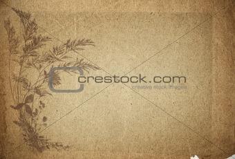 old parchment paper