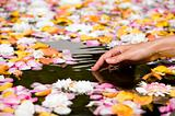 Woman touching flower petals