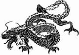 Illustration of Japanese dragon