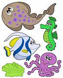 Cute marine animals collection 3