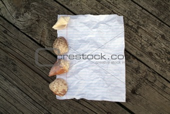 Crumpled notepaper with shells and wood