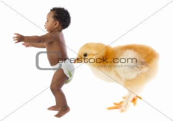 Baby running scared by a huge chicken